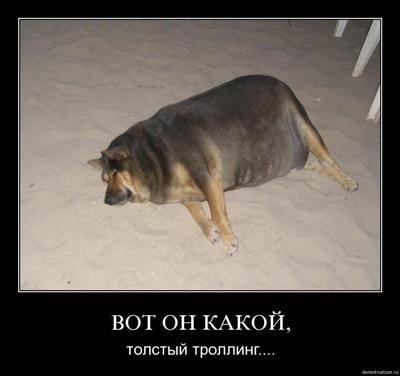толстый тролль