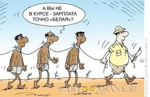 belaya-zarplata_1