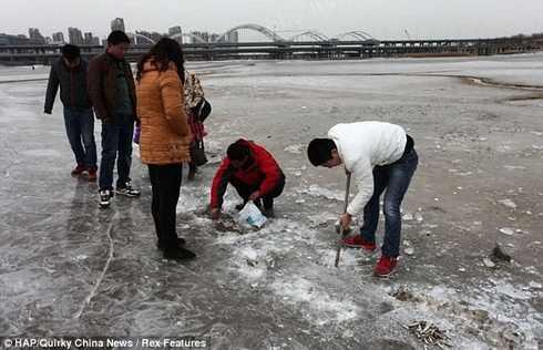 рыбалка_Китай