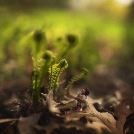 Весна в прошлом