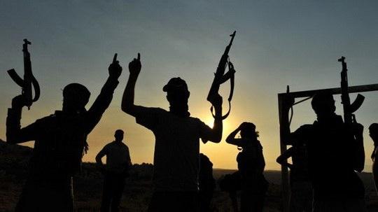 наёмники из европы в сирии