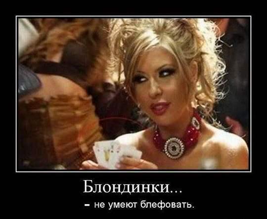 ФРАЗО24_
