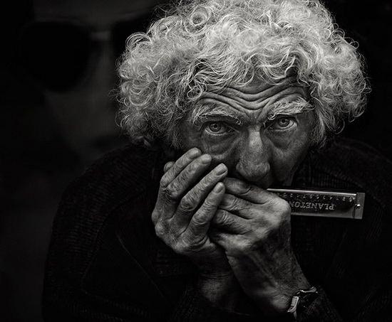 Человек с губной гармошкой. Andre du Plessis