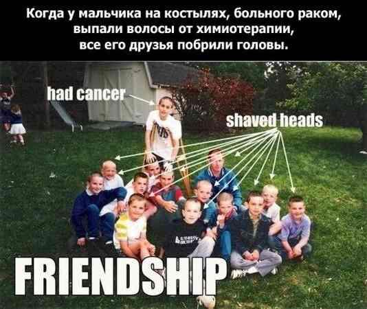дружба_