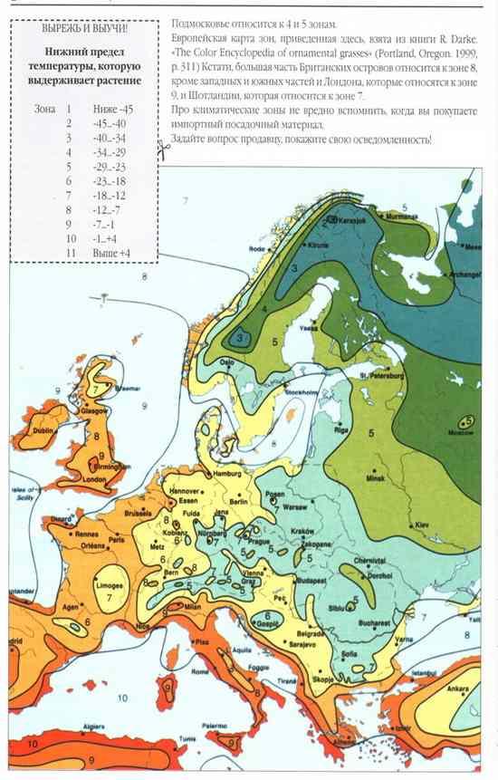 карта_