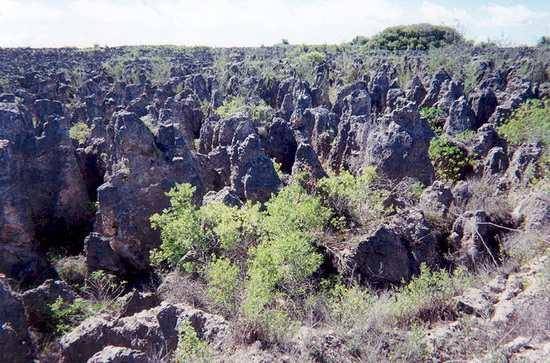 Центральное-плато-Науру