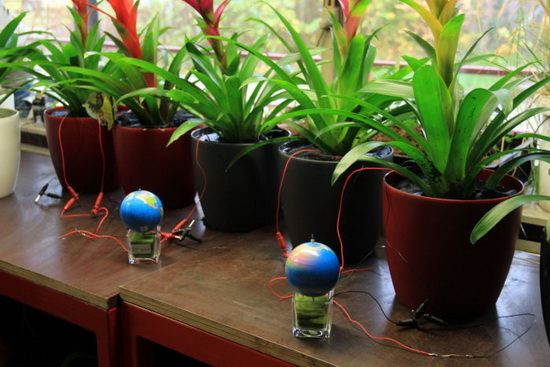 plant-e_3