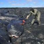 Как собирают вулканическую лаву (видео)
