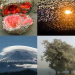 Уникальные природные явления