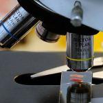 В России изобретен гель, останавливающий кровь за 30 секунд