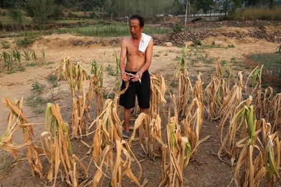 засуха+Китай