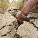 Из-за засухи китайцы покидают свои дома
