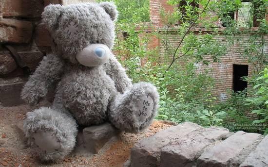 mishka-teddy