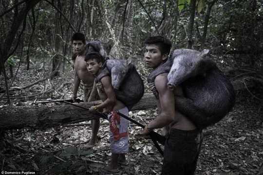 племя_Ава+джунгли+Амазония+фото