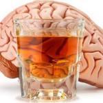 Как воздействует на клетки мозга чрезмерное потребление алкоголя?