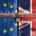Опрос: в Великобритании резко сократилось число сторонников членства в ЕС