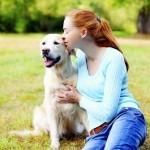 Опасно ли целоваться с домашними животными?