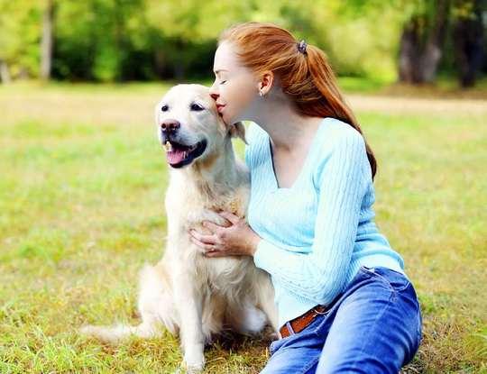На теле животных, могут присутствовать возбудители гельминтоза, токсоплазмоза, пастереллеза и других заболеваний.