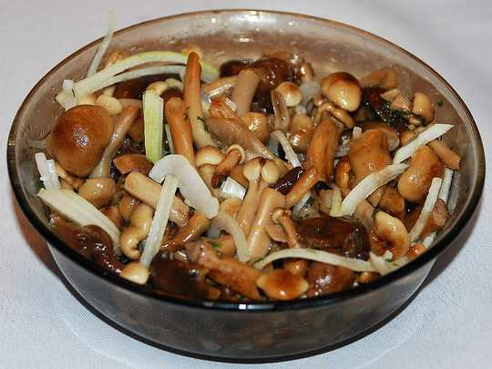 Маринованные грибы опята по питательной ценности на одну позицию уступают груздям и белым грибам