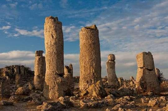 В 18-ти километрах западнее болгарской Варны расположено удивительное место, под названием Каменный лес.