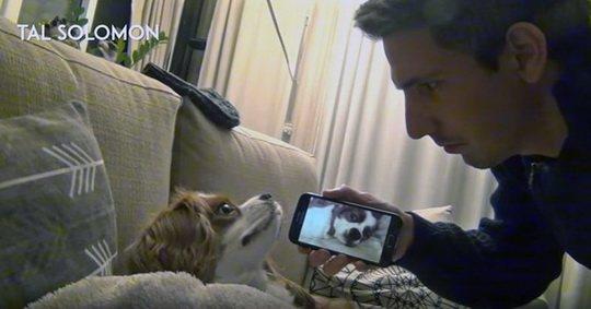 Если вы когда-либо испытывали стресс, пытаясь заснуть рядом с громким храпящим человеком или собакой, это видео может вам помочь.