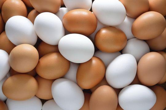 Окраска яиц – такой же наследственный признак, как и окраска оперения.