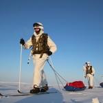 Госпрограмму по развитию Арктики предложили сократить вчетверо