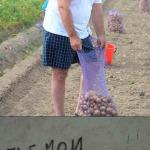 Всемирный банк .vs Беларусь: «всем по 500» в 2017 году никак не получится