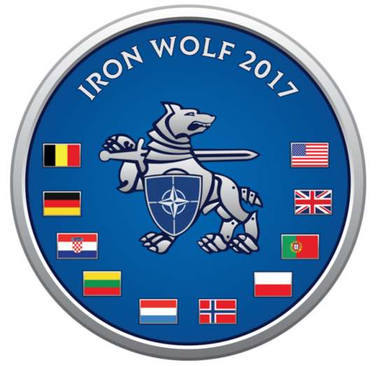 """В Литве 12 июня начались учения """"Железный волк - 2017"""", в которых участвуют более пяти тысяч солдат и офицеров из девяти стран НАТО"""