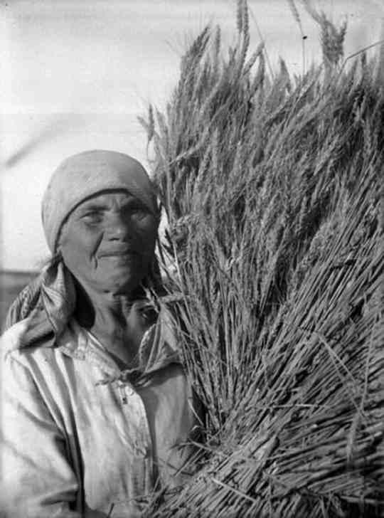 Советские крестьяне, составлявшие в сталинское время большинство населения, были лишены пенсий.