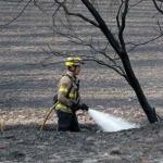 Италия: арестован бригадир группы пожарных-мошенников, занимавшийся поджогами