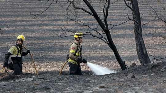 Итальянская полиция арестовала сицилийского волонтера-пожарного, который занимался поджогами