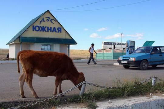 Дополнительные деньги нужны на дороги в Калининградской области и Крыму.