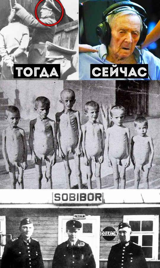Хорошо известно, что после разгрома нацистской Германии её главные лидеры либо покончили с собой, либо были осуждены в ходе Нюрнбергского процесса и казнены