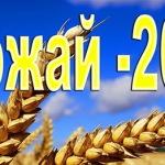 У одного из лучших комбайнеров Беларуси, будут вычитать из зарплаты за солярку
