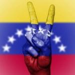 Венесуэла призвала трейдеров покупать ее криптомонеты с 20 февраля
