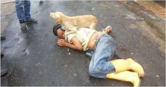 Позволивший себе лишнего колумбиец не смог дойти до койки и решил вздремнуть прямо на дороге.