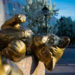 Как сибирские коты спасли Эрмитаж: история в картинках