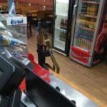 Санкт-Петербург: бойцы ОВО Росгвардии забыли оружие в одном из кафе