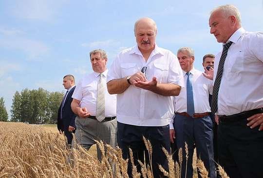 Александр Лукашенко посетил Гомель и выступил перед работниками предприятия «Гомсельмаш», которое производит сельхозтехнику.