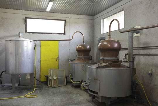 Этиловый спирт (этанол), иначе называемый винным, получают методом синтетической или биохимической переработки древесины, а также путем сбраживания продуктов