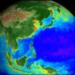 NASA показало, как изменялась жизнь на Земле в течение 20 лет (видео)