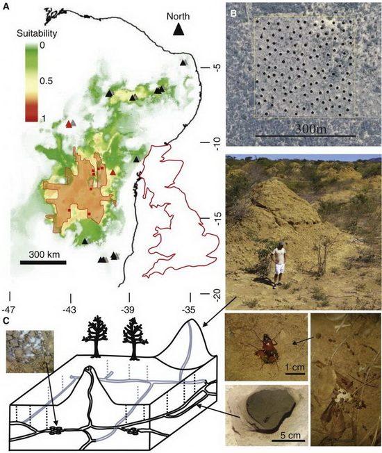 Образцы почвы подтвердили, что строительство насыпей началось 3 820 лет назад и продолжалось вплоть до конца Средневековья.