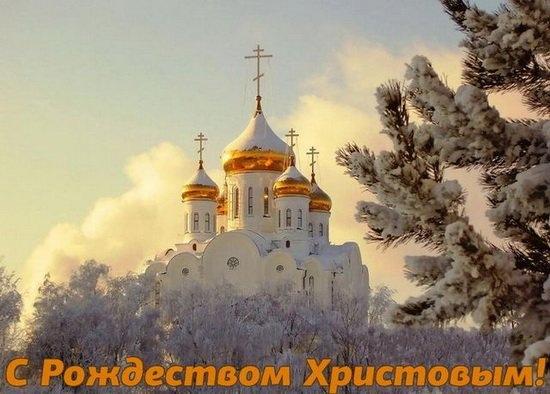Желаю всем вам радости и утешения в наступившем Новом году, крепости сил, благоденствия и здравия!