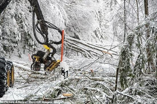 Работы по уборке снега в Германии3