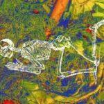 В США готовятся узаконить проект превращения умерших людей в компост