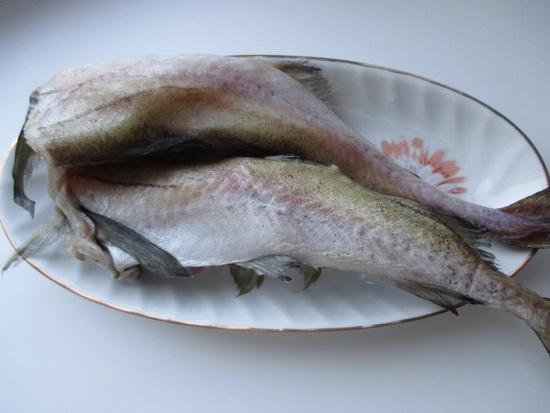 Готовить будем из такой рыбы