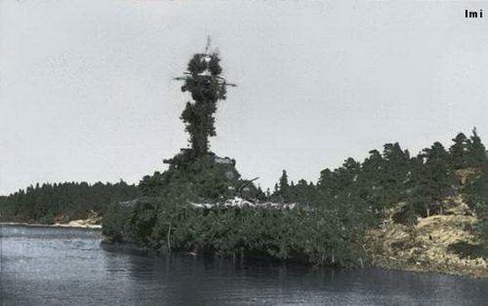 После поражения от японцев в сражении в Яванском море всем оставшимся кораблям союзников было приказано убыть в Австралию