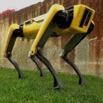 «Робопёс» Boston Dynamics, выйдет в продажу летом