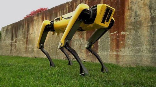 Первым коммерческим продуктом Boston Dynamics станет четырехногий робот SpotMini, похожий на собаку.